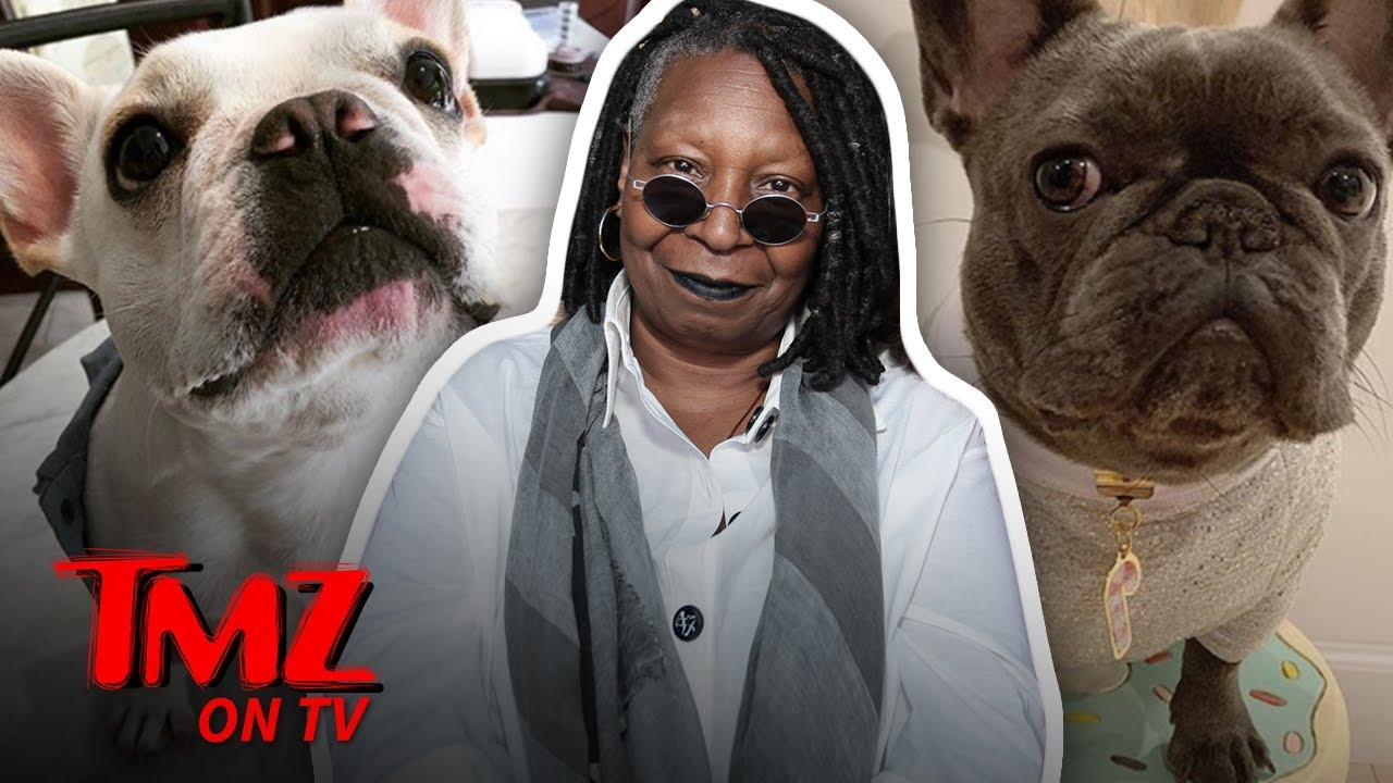 Carole Cook Shares Her Secret To A Long Life!   TMZ TV 1