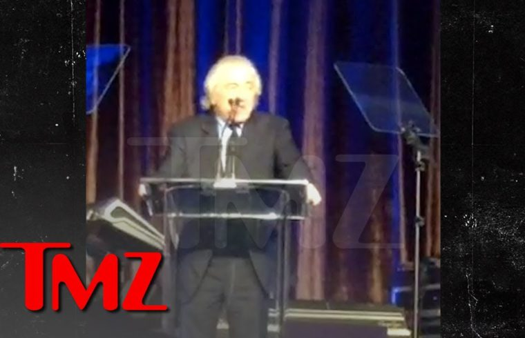 Robert De Niro Attacks President Trump During American Icon Awards Speech | TMZ 1